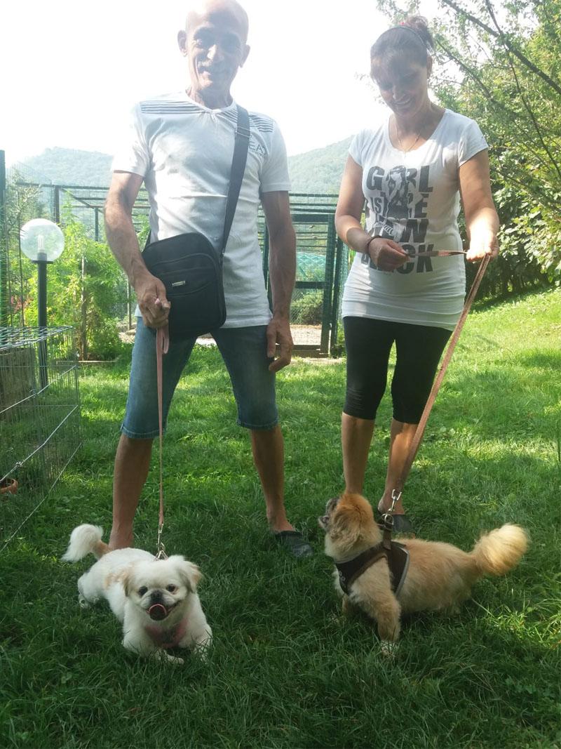 pensione-cani-agosto_0003_Livello 5