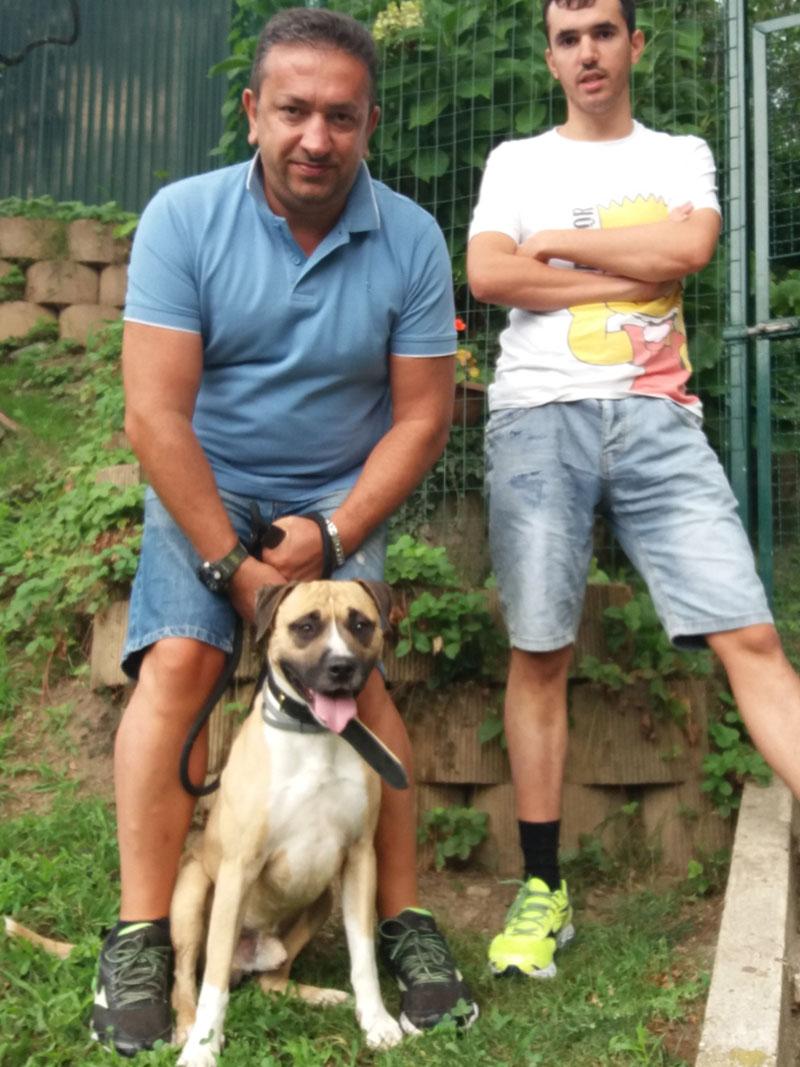 pensione-cani-agosto_0011_WhatsApp Image 2018-08-13 at 15.40.32
