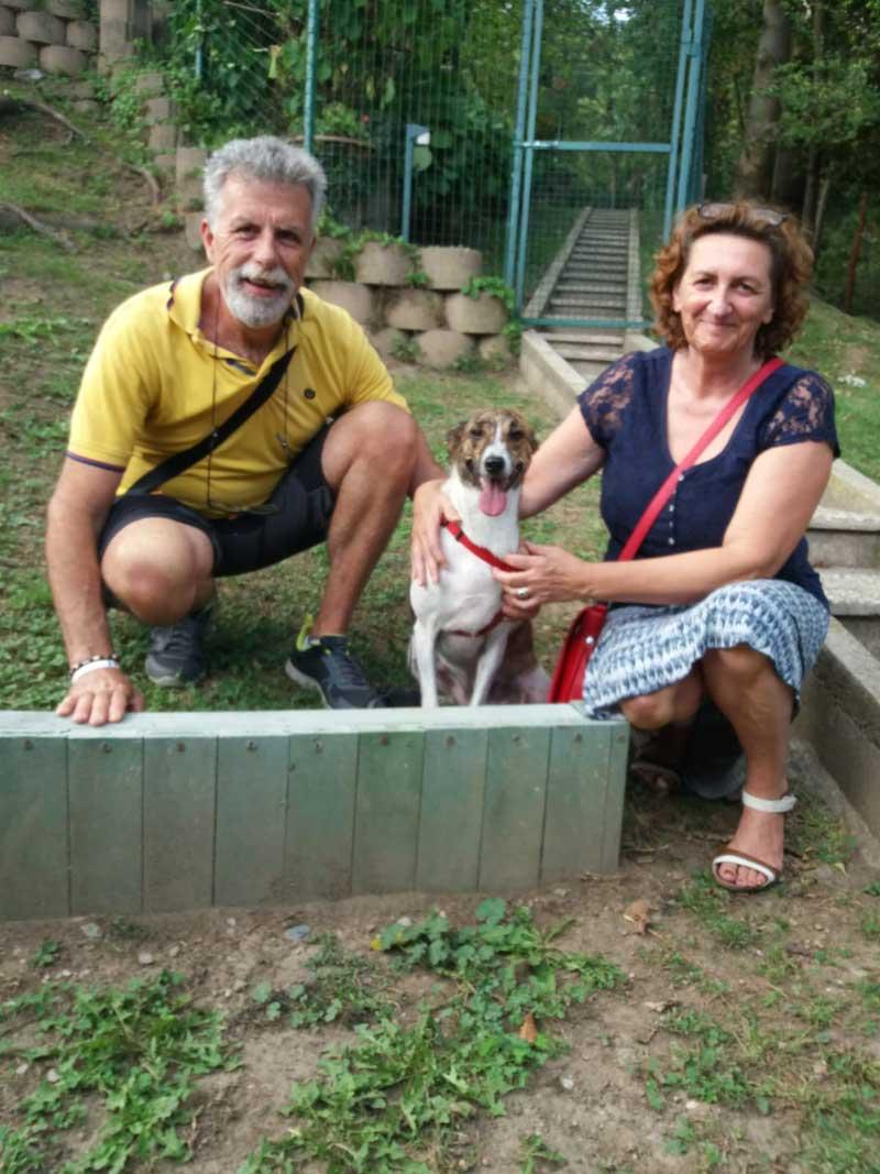 pensione-cani-settembre-23