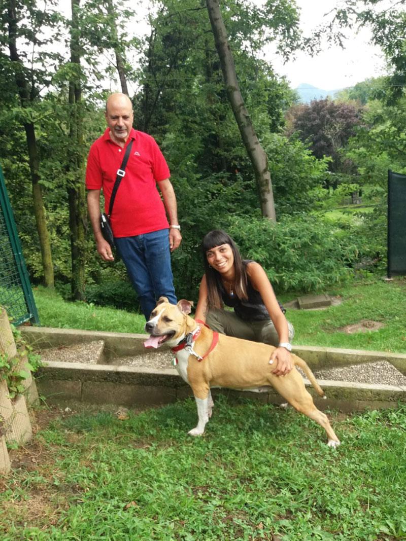pensione-cani0609-3