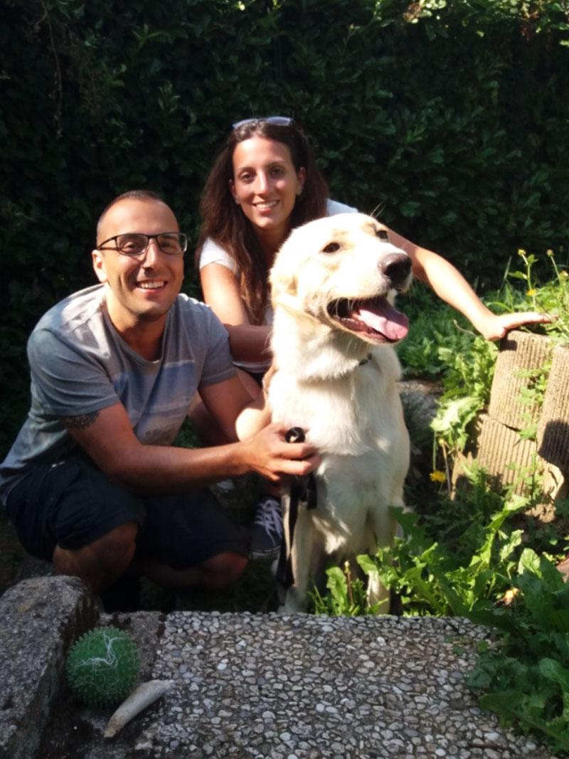 pensione-cani0908-3