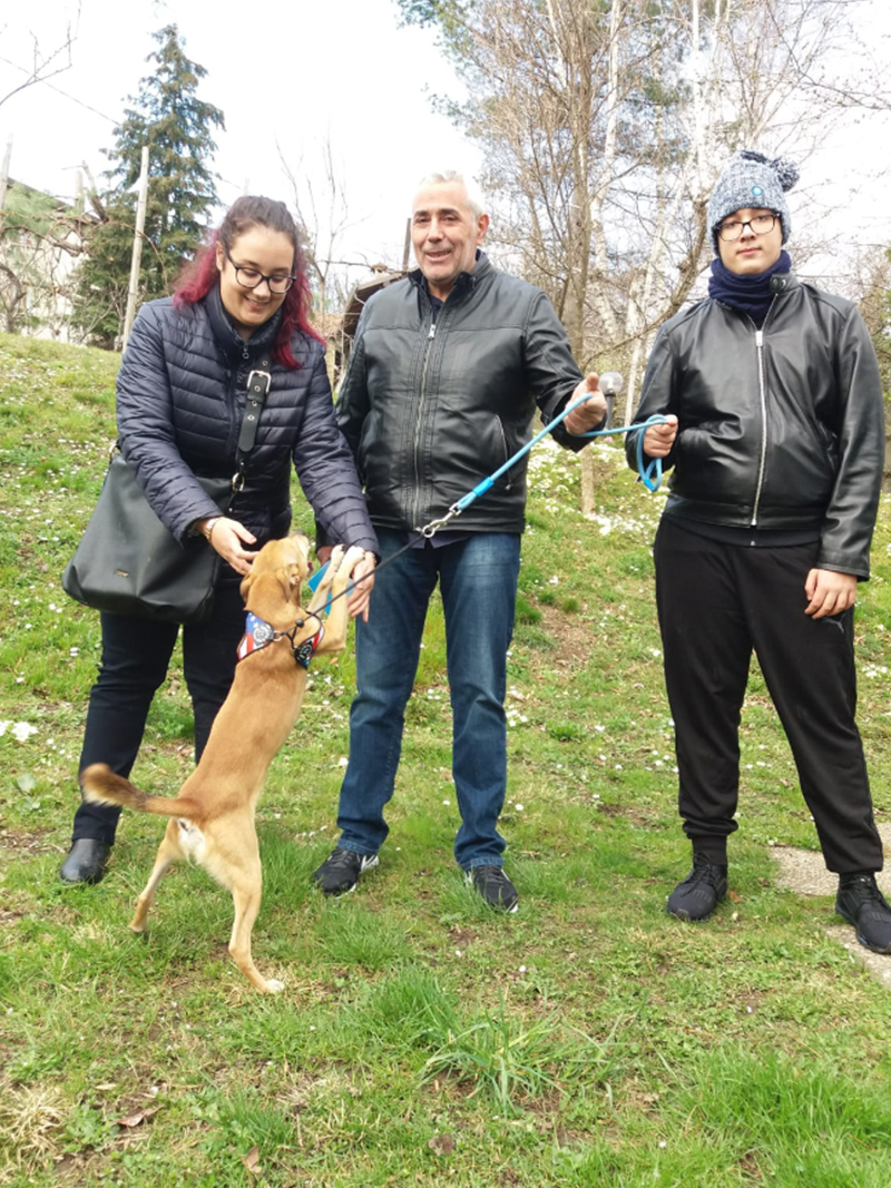 pensione-cani1103-2