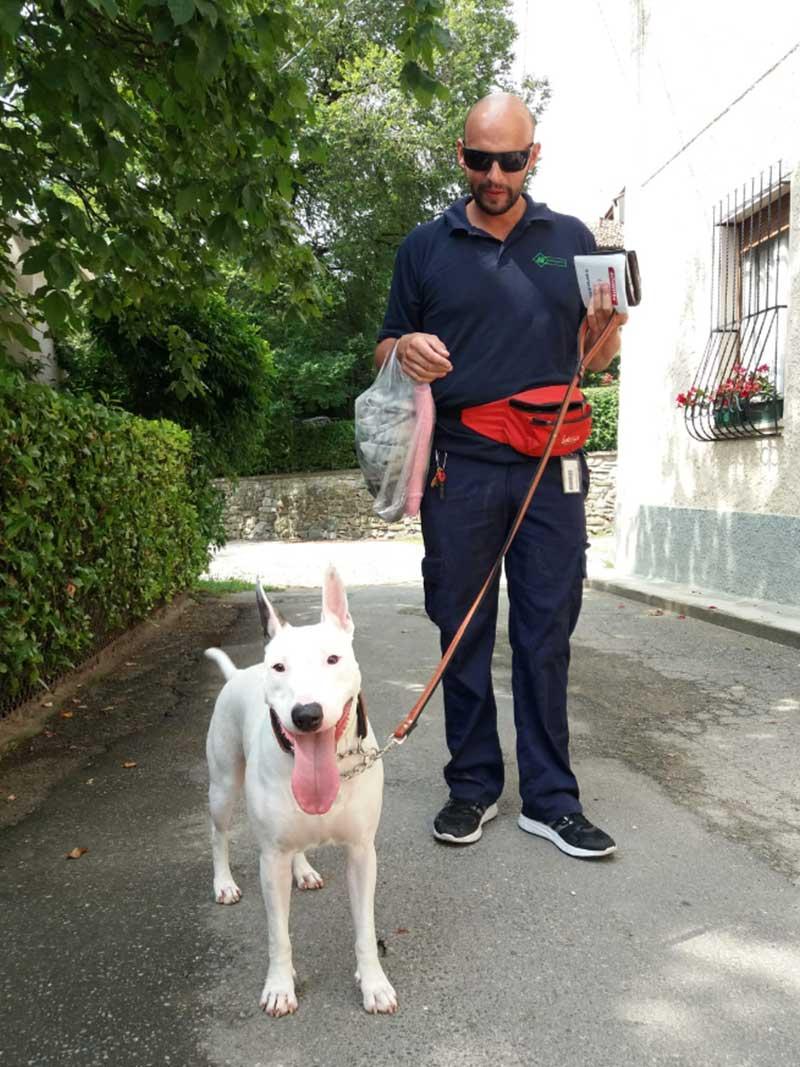 pensione-cani1607