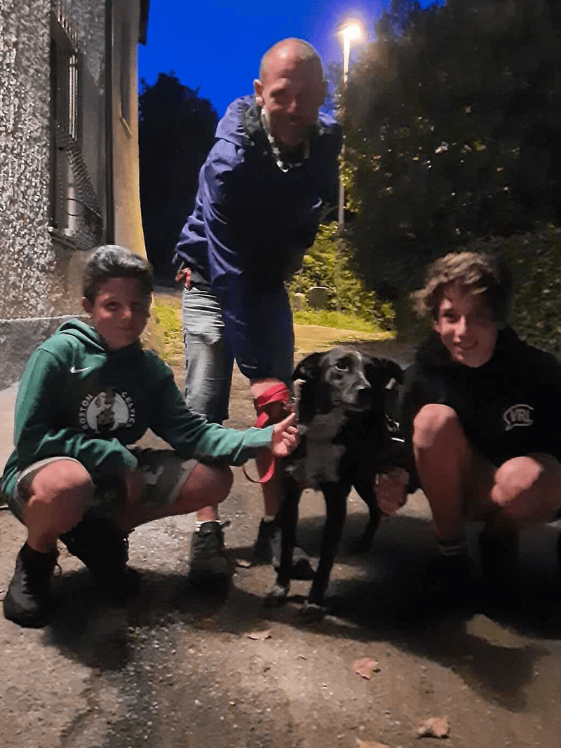 pensione-cani20_31