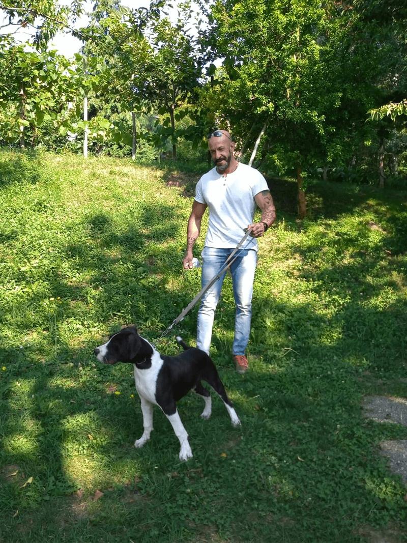 pensione-cani20_4