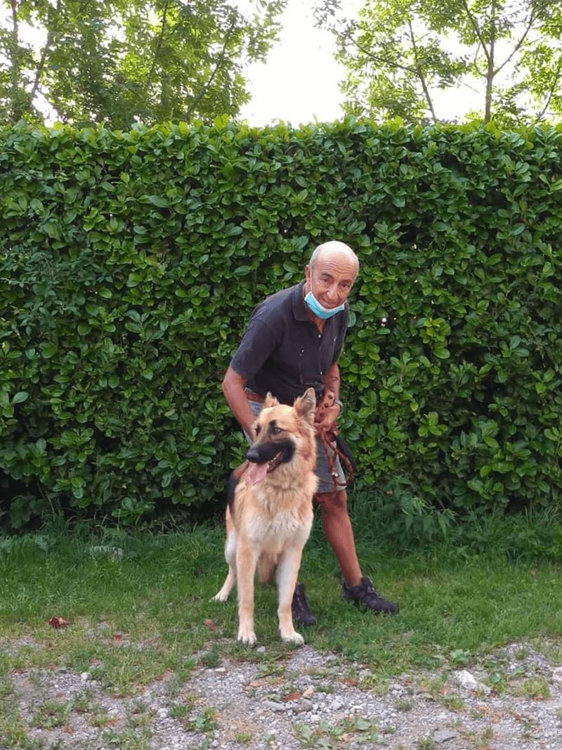 pensione-cani20_6