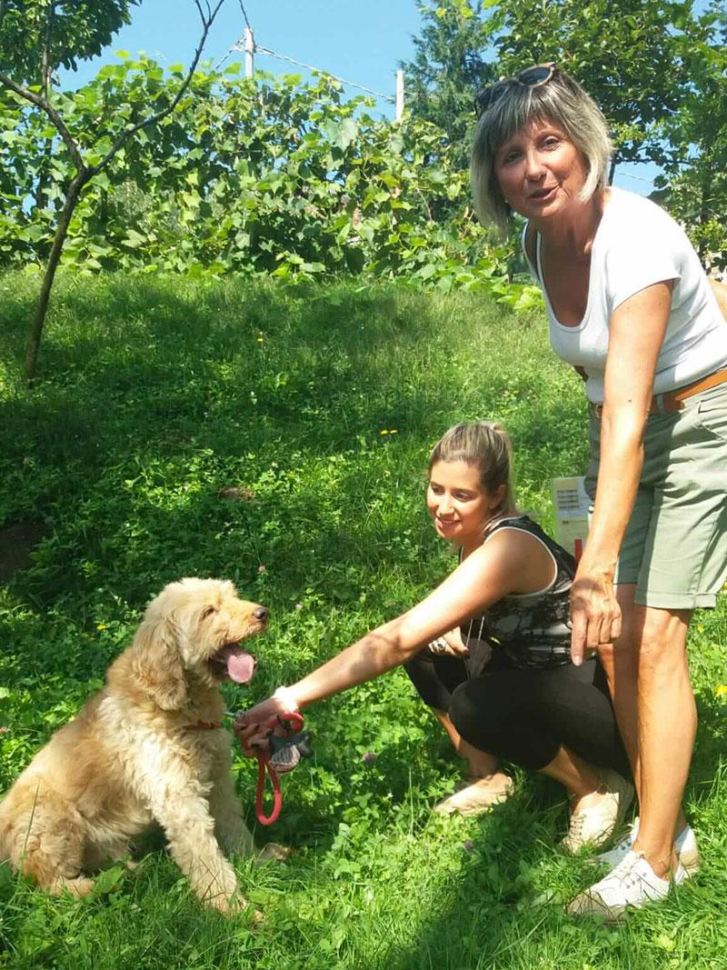 pensione-cani2908-10