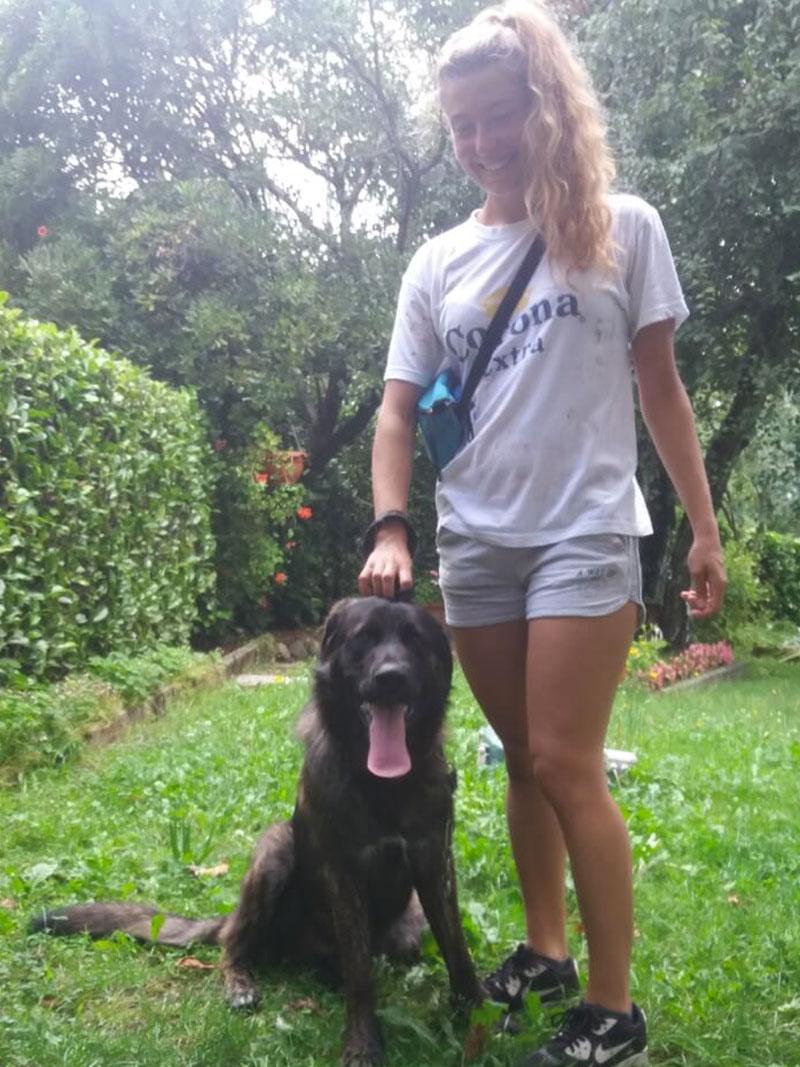 pensione-cani2908-15