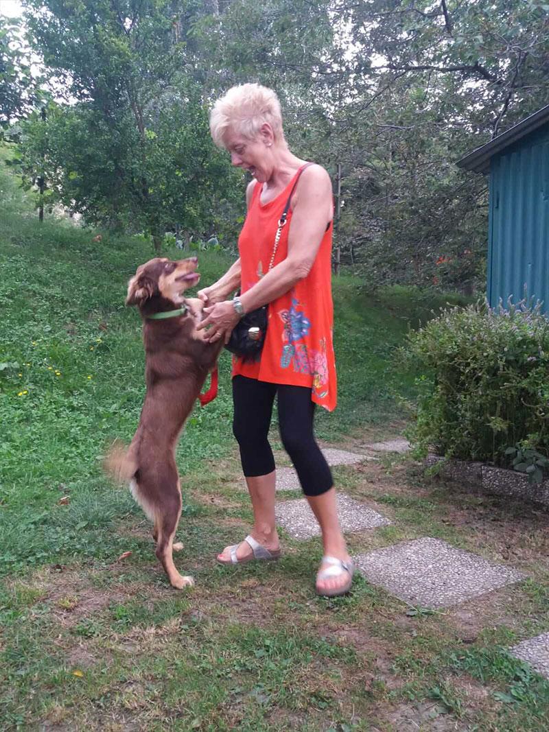 pensione-cani2908-19