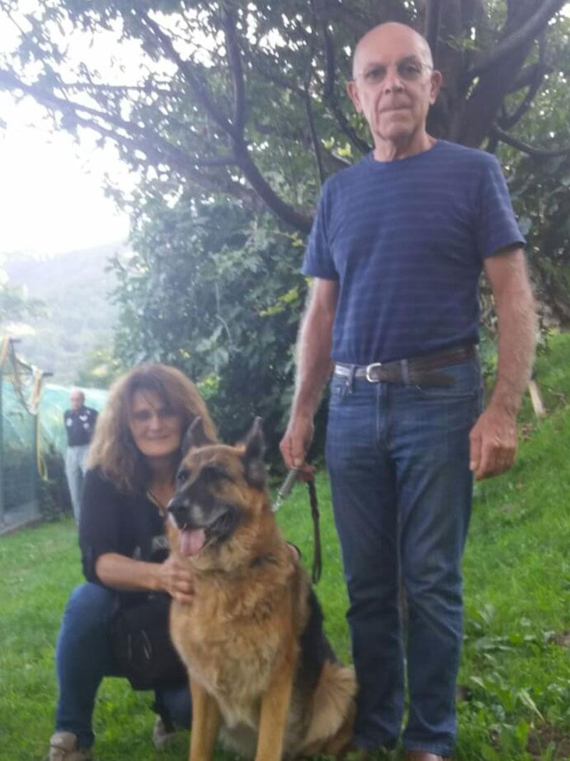 pensione-cani2908-24