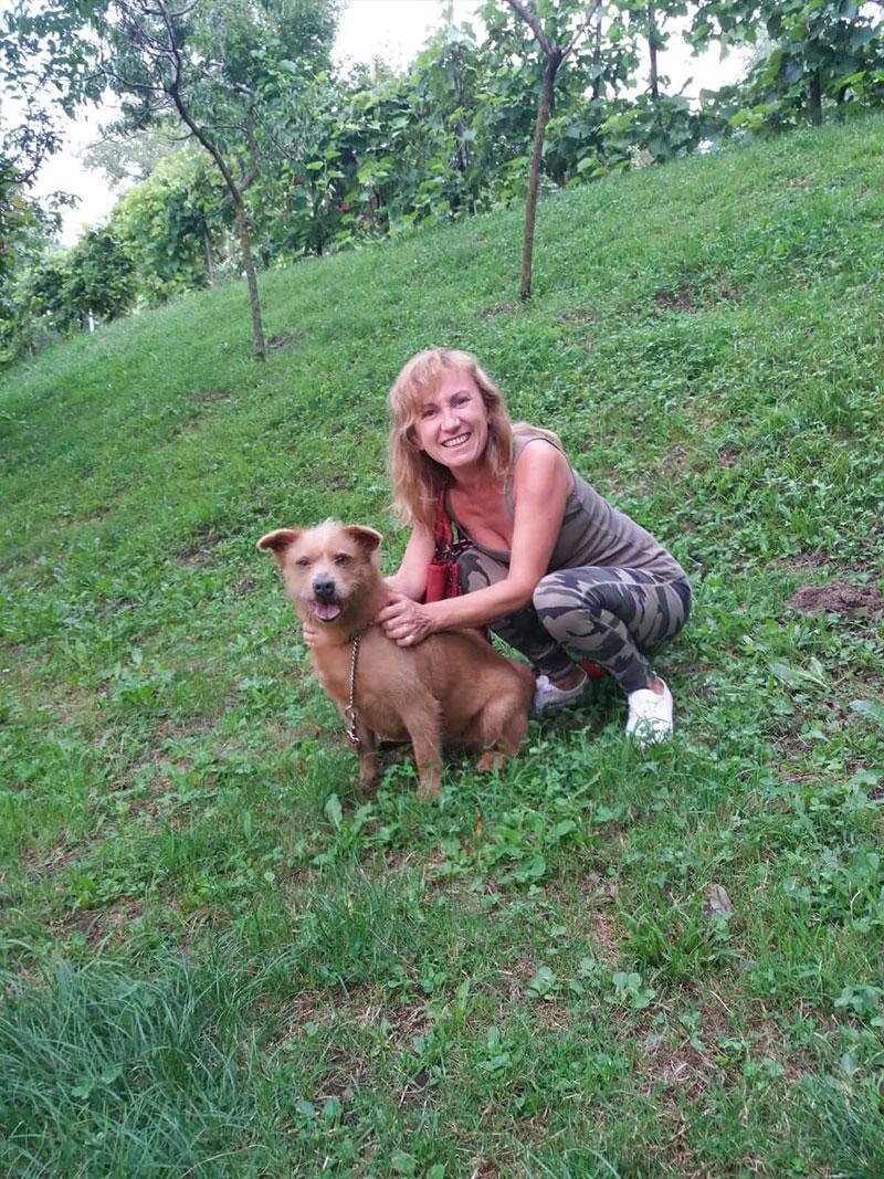 pensione-cani2908-27