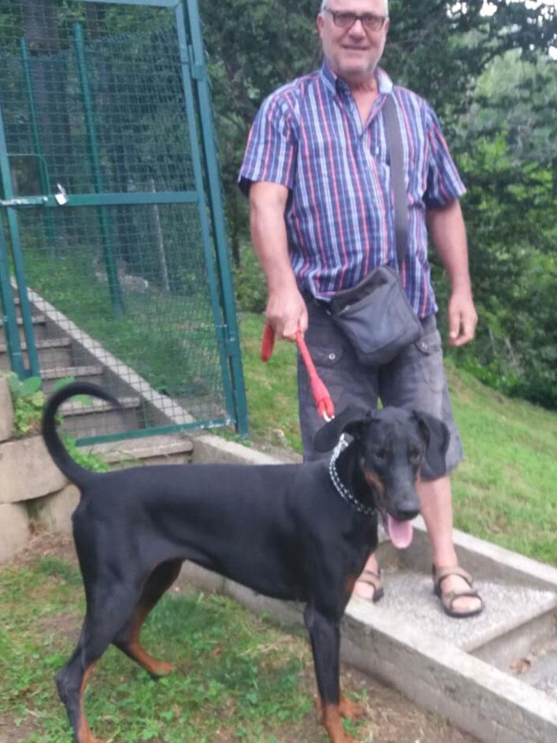 pensione-cani2908-3