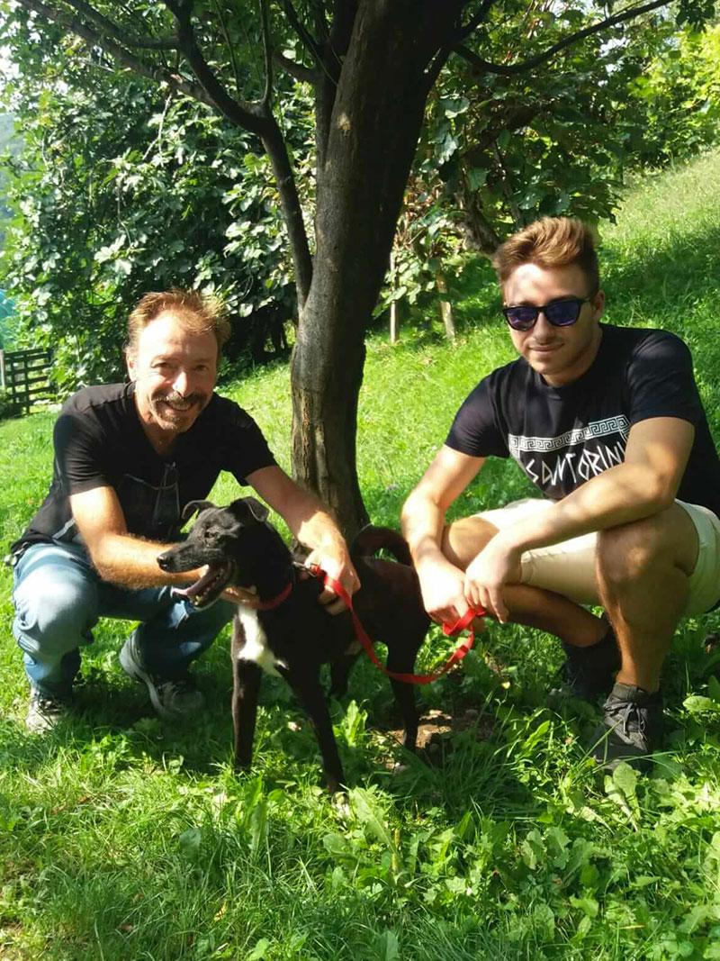 pensione-cani2908-30