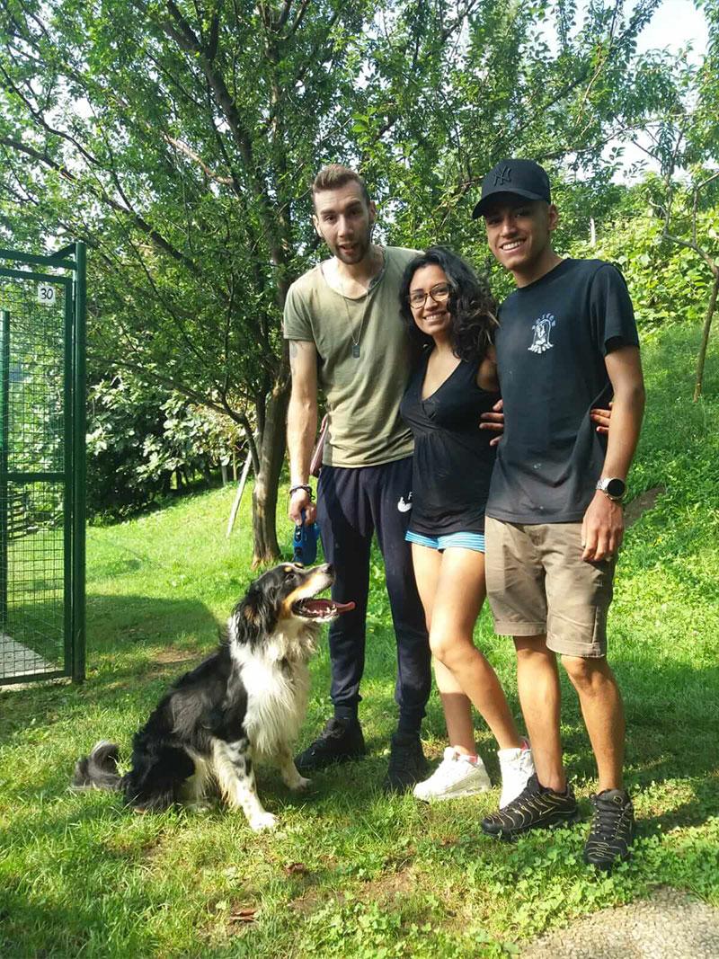 pensione-cani2908-6