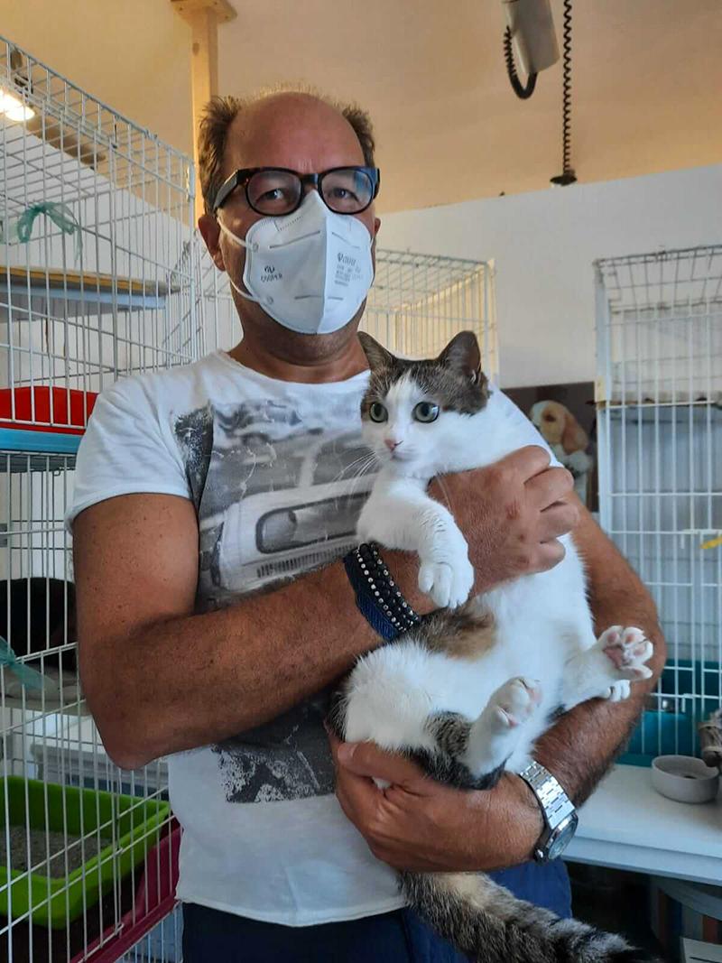 pensione-gatti-settembre20_4