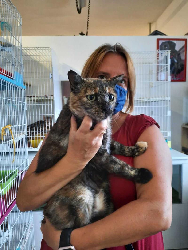 pensione-gatti-settembre20_6